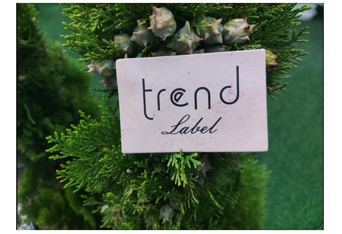 surdur-trend-alt