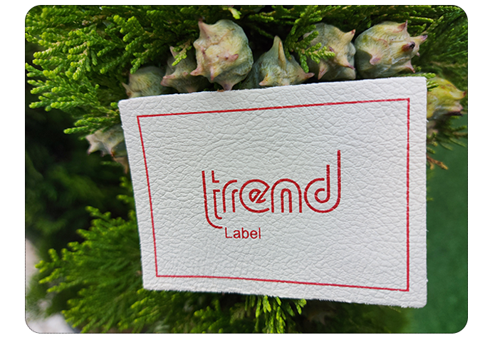 surdur-trend-us